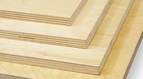 Birch-Plywood