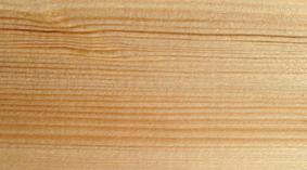 unsorted_redwood