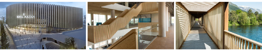 timber_building_montage-870
